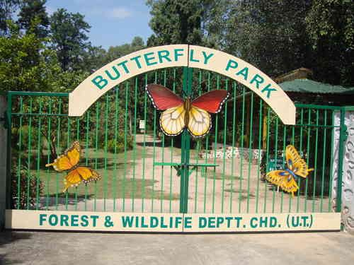 Butterfly park of Chandigarh makes waves