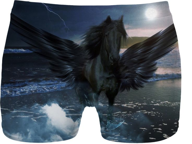 Check out my new product https://www.rageon.com/products/black-pegasus-underwear on RageOn!