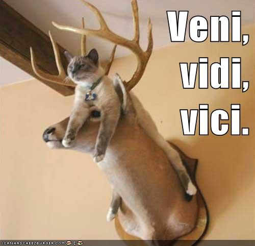 Veni, vidi, vici.    I came, I saw, I conquered.
