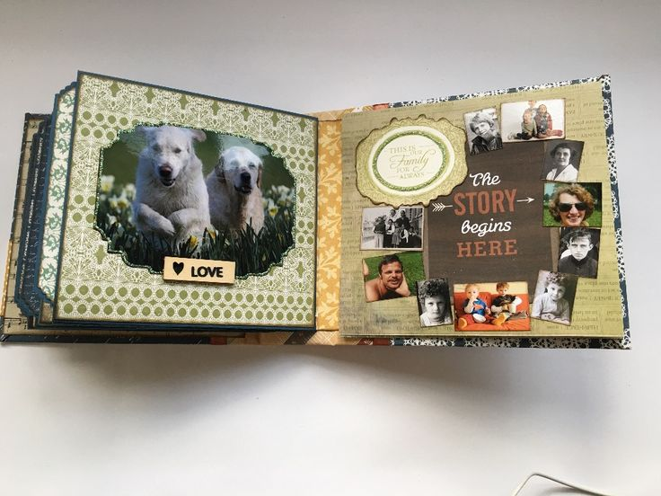 Family Tree Mini: Remember This Moment Forever (filled with photos!) | Creator's…