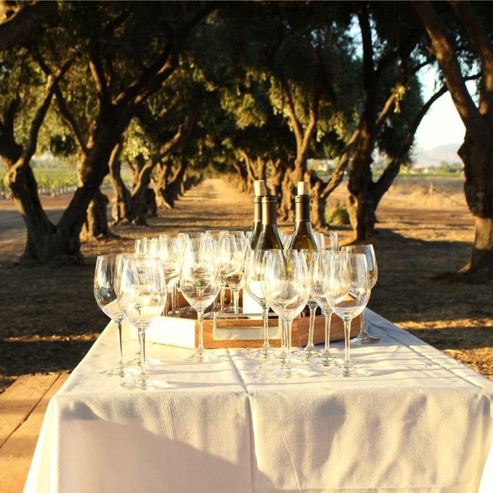 Wente is an incredible destination, with wine tastings, concerts, restaurants, bocce ball, plays and more. Their Wente tour on a wine trolley is fabulous!