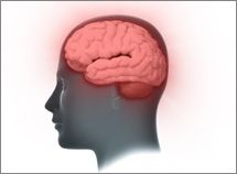 Dementia is a general term for a decline in mental ability severe enough to interfere with daily life. Memory loss is an example. Alzheimer's is the most common type of dementia.