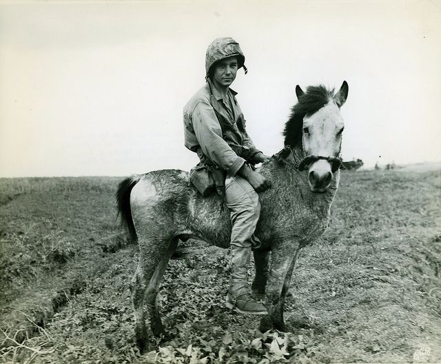 "Private Grady Hogue, Okinawa, April 1945 by Marine Corps Archives & Special Collections, via Flickr. The caption on this photograph reads ""Okinawa Horse Marine-This Texas Leatherneck lost no time in roping a bronc after his unit hit the beach at Okinawa. Astride this Japanese version of a Shetland pony, Marine Private First Class Grady C. Hogue, of Brounsboro, Texas, is ready for the push to the interior of that island on the doorstep of Japan."""