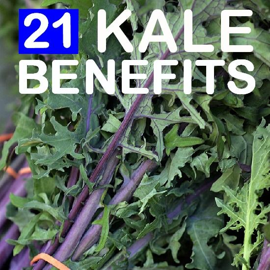 21 Amazing Benefits & Uses Of Kale:  kale is an excellent source of fiber, which binds the bile acids, lowering low-density lipoprotein in the blood. It contains compounds that help to lower the risk of coronary heart diseases. Potassium in kale regulates the blood pressure and heart rate by countering the negative effects of sodium. Steamed kale is best for lowering the cholesterol in the body.