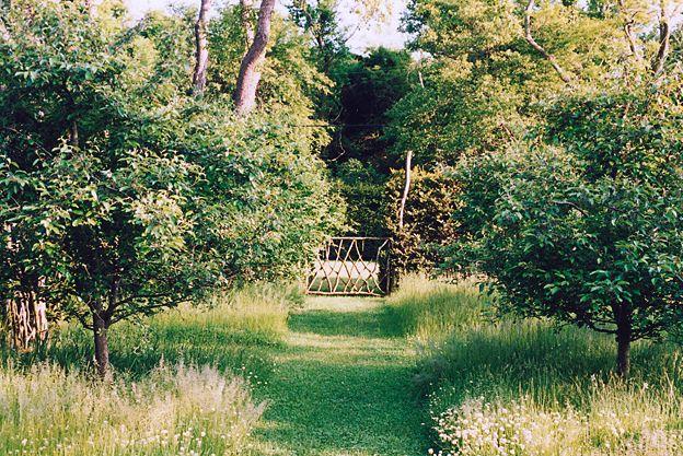 Miranda Brooks - Mastic, Long Island: Peace Gardens, Dreams Backyard, Landscape Design, Gardens Gates, Fruit Trees, Miranda Brooks, Brooks Landscape, Gardens Design, Grass Paths