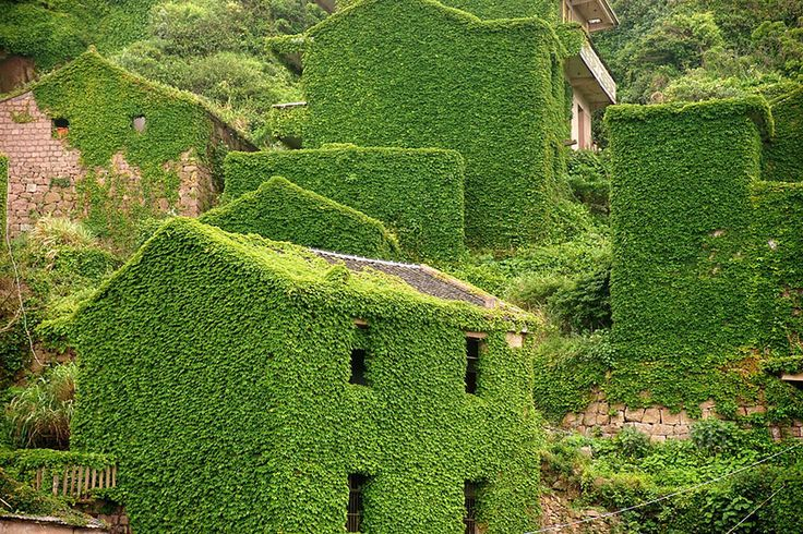 Photographer encounters forgotten Chinese city covered in lush vegetation | Inhabitat - Sustainable Design Innovation, Eco Architecture, Green Building