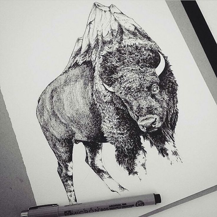 Heres an awesome #nature #drawing by Peter Carrington {@pcillustration) of a bison who seems to have sprouted a mountain from its back. It reminds me a little of a double exposure photograph where mountains are superimposed into the picture of a bison but mostly it makes me think of mythological creatures and tales of folklore.  There are stories that describe the world being supported on the back of a turtle. Likewise Norse mythology tells of how the realms of existence are connected to…