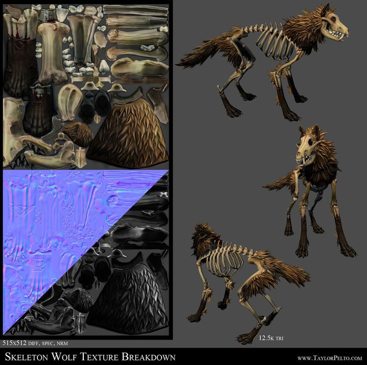Skeleton Wolf Texture Breakdown by 100chihuahuas.deviantart.com on @deviantART