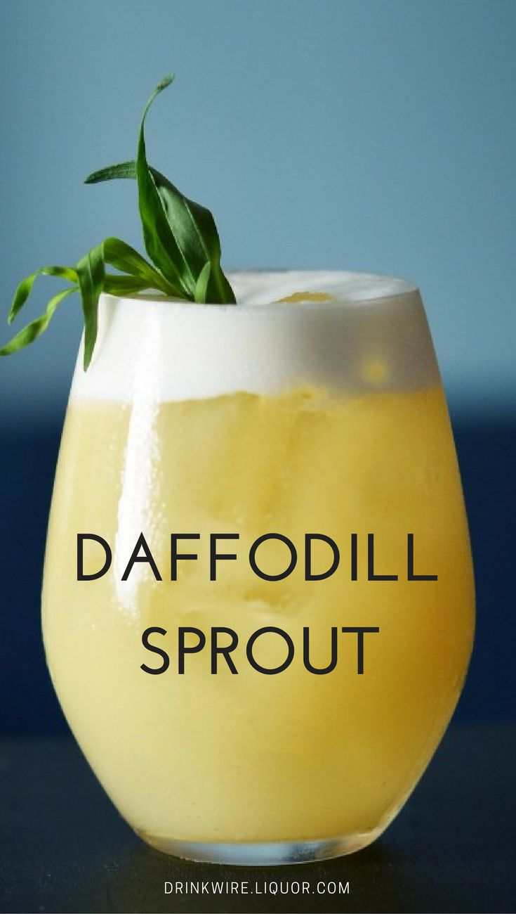 """This cocktail is perfect for celebrating Easter! """"Daffodill Sprout"""" combines the traditional Danish Easter ingredients of egg and mustard (dirty eggs) with the light dill aquavit and the return of spring in the form of a tarragon sprig."""
