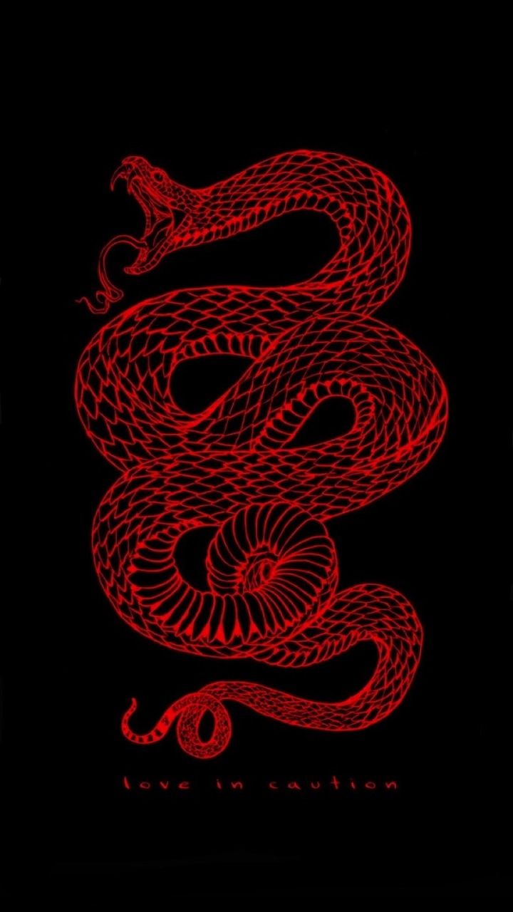 Pin By We Heart It On Wallpapers Snake Wallpaper Edgy Wallpaper Red Aesthetic