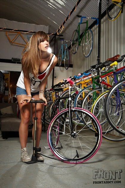 Fixie Chickz: Fixie In a shop, on a box, with a fox