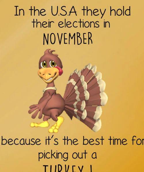 November Joke, Election Joke, Funny Turkey Joke - cktechconnect graphics online marketing company www.cktechconnect.com