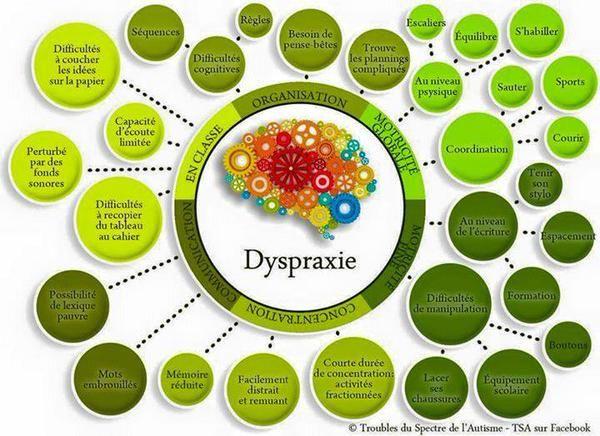 La dyspraxie