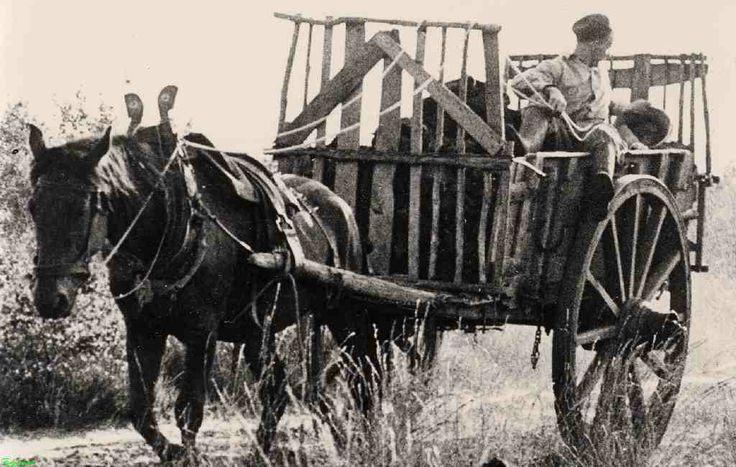 0210512 Coll. chr. Warnar 1930: Turfkar met voerman. Met vertok 's morgens om 3-4 uur om turf te gaan verkopen.