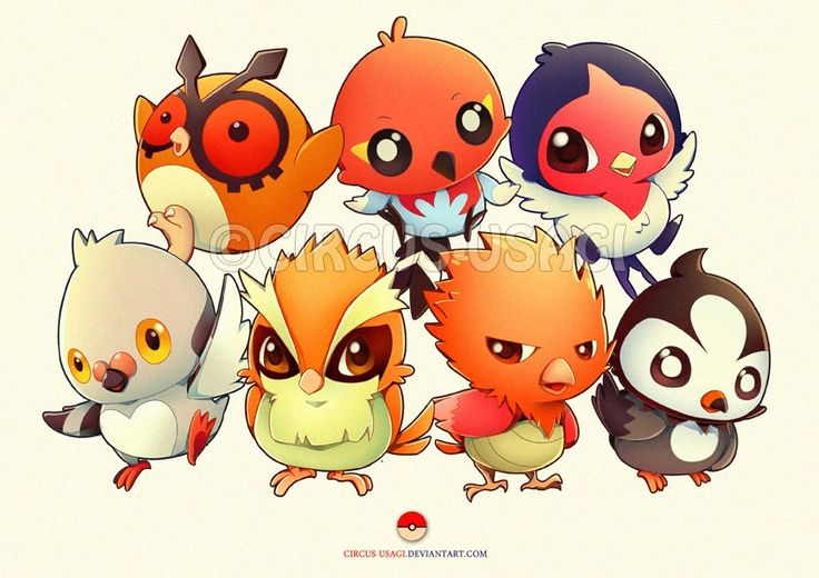 Cute Bird Pokemon 3 Pokemonnn Pinterest D Cute