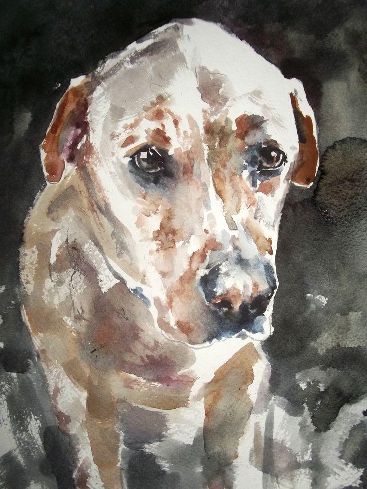 Labrador portrat xx Watercolour, Cristina Grnciuc.
