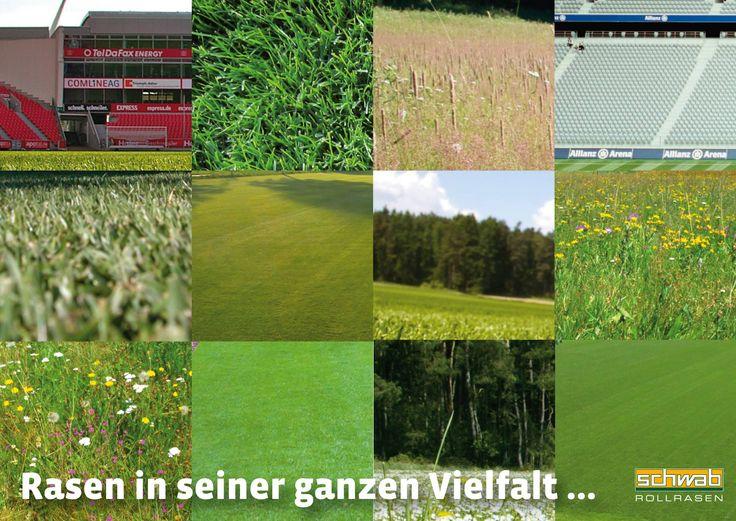 Rollrasen  7 best Rollrasen, schnell und einfach images on Pinterest | Garden ...