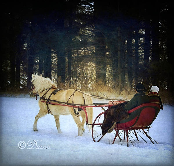 Currier & Ives Memory (by Diana Duffy) A sleigh ride would be so much fun.