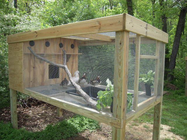 17 best ideas about duck coop on pinterest pet ducks for Chicken and duck coop