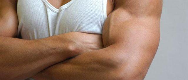 artikkel for fremgang i muskelvekst