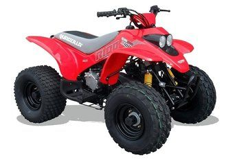 R100 Quadzilla Junior Quads. For more information: http://www.fresh-group.com/junior-quads.html