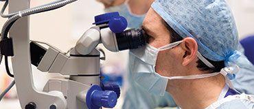 WHO declares the international spread of wild poliovirus a public health emergency of international concern.