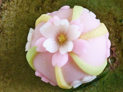 Sakura cake, sweets in spring