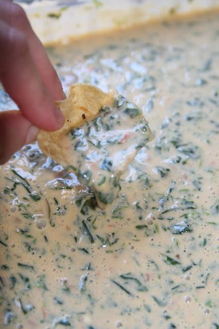 Hot Spinach Salsa Queso Dip
