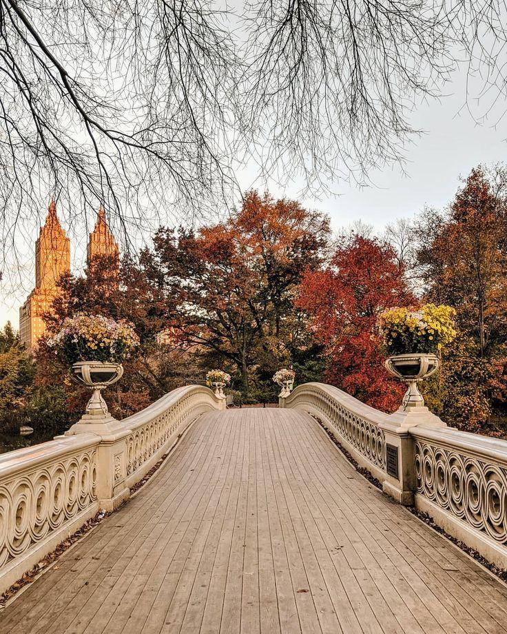 Central Park: Bow Bridge