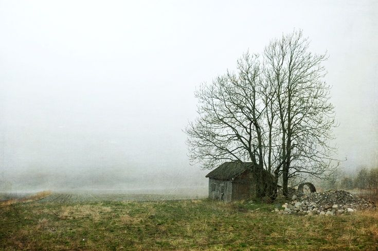 ARTFINDER: Disappearing Landscape by Randi Grace Nilsberg - The landscape seems to disappear into the fog.  The house will also be gone soon.  Photography with textures.