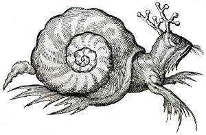 Ulysse Aldrovandi, Histoire naturelle des reliques d'animaux privés de sang (...) - AREHN