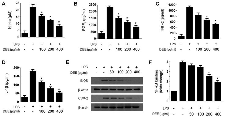 Influence of Culture Medium on Production of Nitric Oxide and Expression of Inducible Nitric Oxide Synthase by Activated Macrophages In Vitro