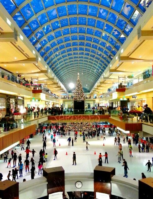 Houston Galleria - yes, a mall with a ice rink in the middle of it!!! Btw!!! Open year round...