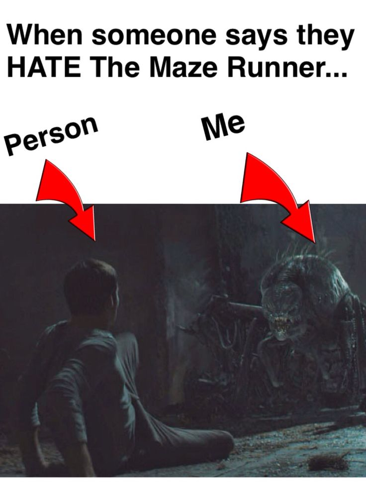 When someone says they hate the maze runner..