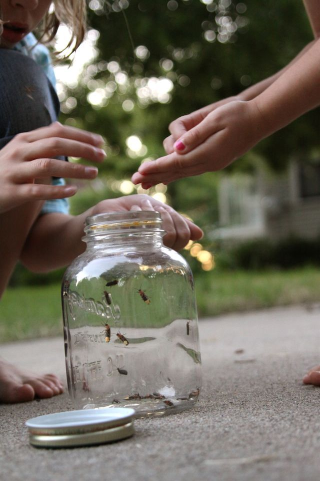 Catching fireflies - I remember this...
