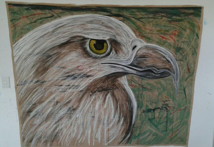Eagle- Watercolor- Black Charcoal and White Charcoal- Green Soft Pastel