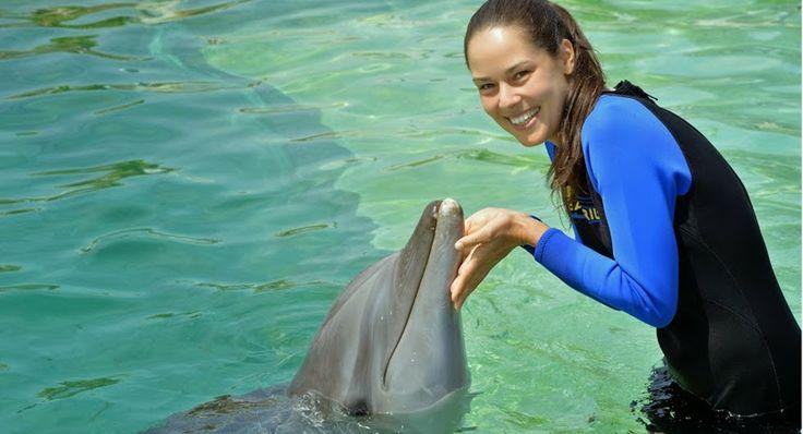 Το κορίτσι και το δελφίνι, στο Μαϊάμι. Η Ανα Ιβάνοβιτς ήταν ανάμεσα στις τενίστριες που έζησαν την απίστευτη εμπειρία, καθώς έπαιξαν και κολύμπησαν με τα δελφίνια, σε εκδήλωση που έγινε στο πλαίσιο του τουρνουά της WTA που θα διεξαχθεί εκεί. Το μόνο κακό, για τους θαυμαστές της εντυπωσιακής Ιβάνοβιτς, ήταν πως η τενίστρια από τη Σερβία ήταν ντυμένη από την κορυφή μέχρι τα νύχια, με την απαραίτητη στολή. http://www.iefimerida.gr/