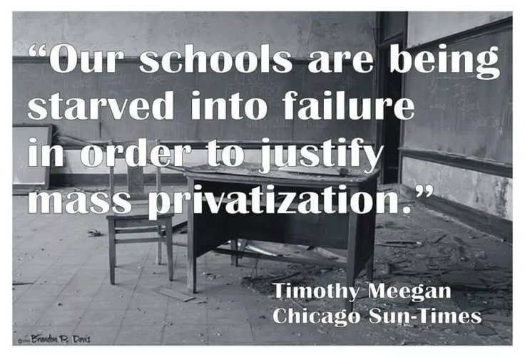 Image result for big education ape privatize