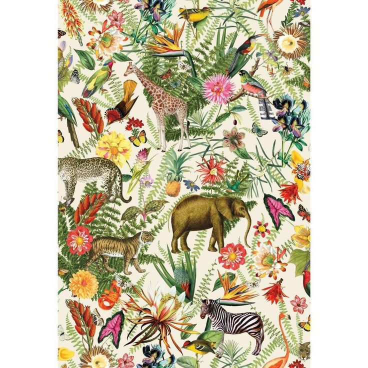 Tropical Zoo Peel And Stick Wallpaper By York Lelands Wallpaper Peel And Stick Wallpaper Wallpaper Animal Wallpaper