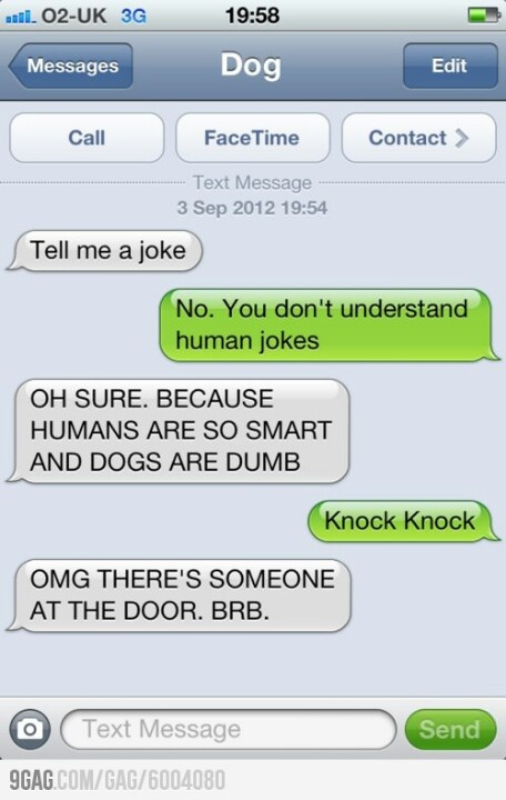 Texts from the dog