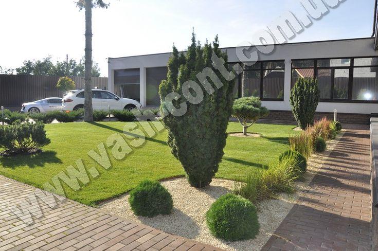 Озеленение двора в Бортничах, фото
