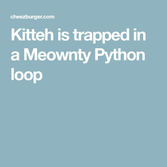 Kitteh is trapped in a Meownty Python loop