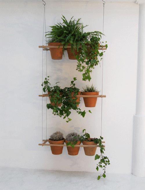 Planten ophangen   Interieur inrichting