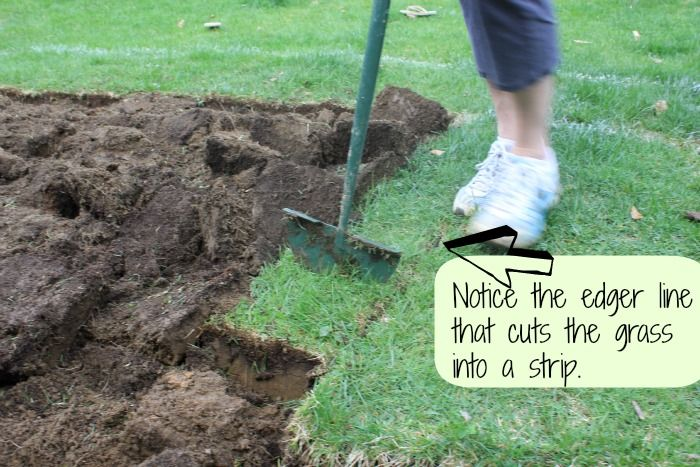 Removing Sod - grass strips