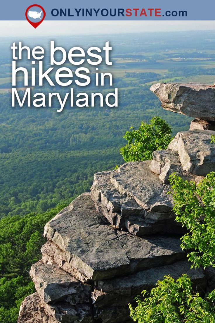 Travel   Maryland   Attractions   Boardwalks   Places To Visit   USA   East Coast   Outdoor   Adventure   Waterfront   Old Line State   Ocean City   Things To Do   Islands   Swamp   Forest   Natural Beauty   Easy Hikes   Promenade   Sanctuary   Fishing Pier   Beaches   Nature   Day Trips   Best Maryland Hikes   Scenic Hikes