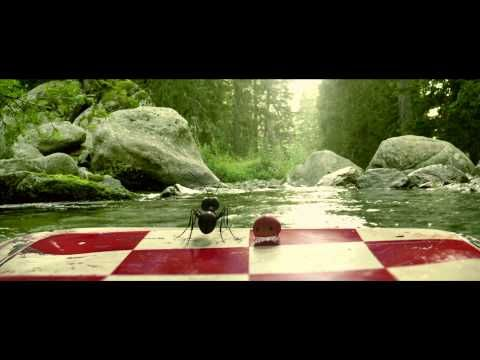 ▶ Minuscule valley of the lost ants trailer - YouTube