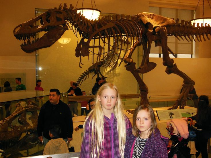 Fun things to do with kids: American Museum of Natural History - New York City