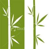 Image detail for -free bamboo vector art set for your asia china japan climate forest ...