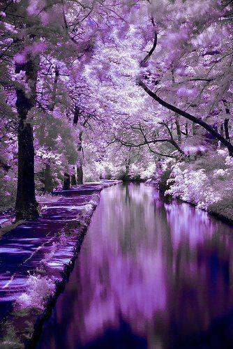 Bright violet ist definitiv eine meiner Farben. …
