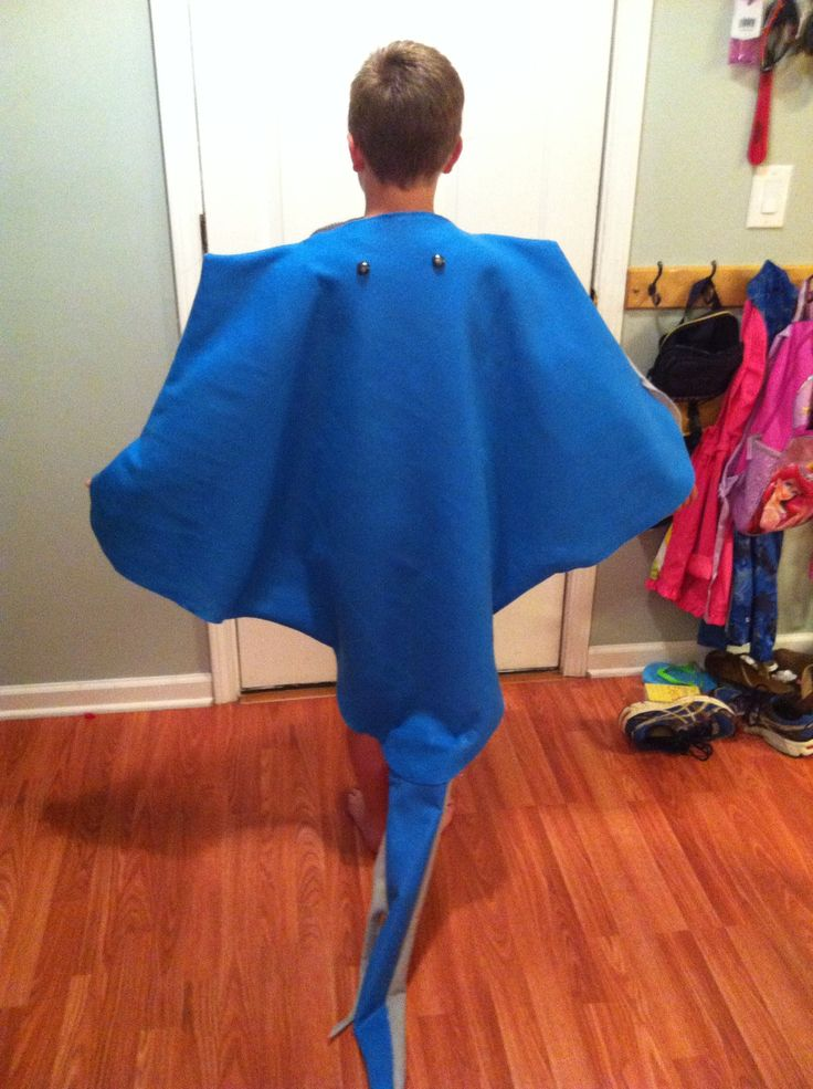 Stingray costume